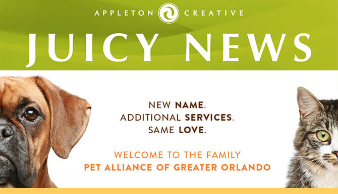 Juicy News - Pet Alliance