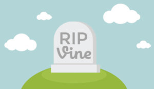 what happened to vine