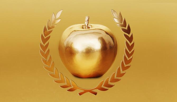 Orlando Award-Winning Marketing Agency