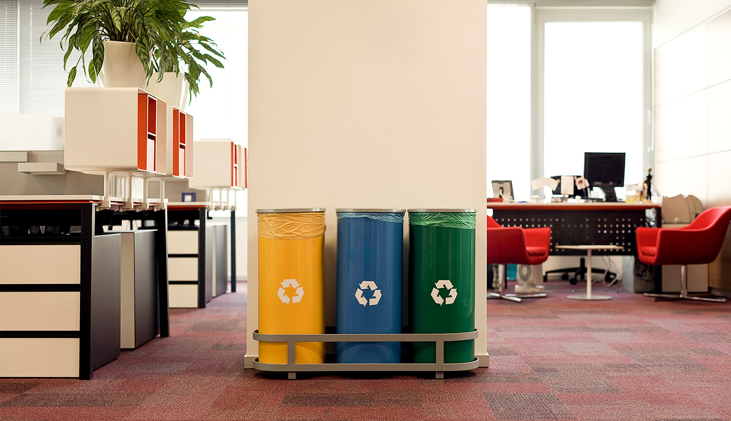 5 Environmentally Friendly Business Practices for the Office