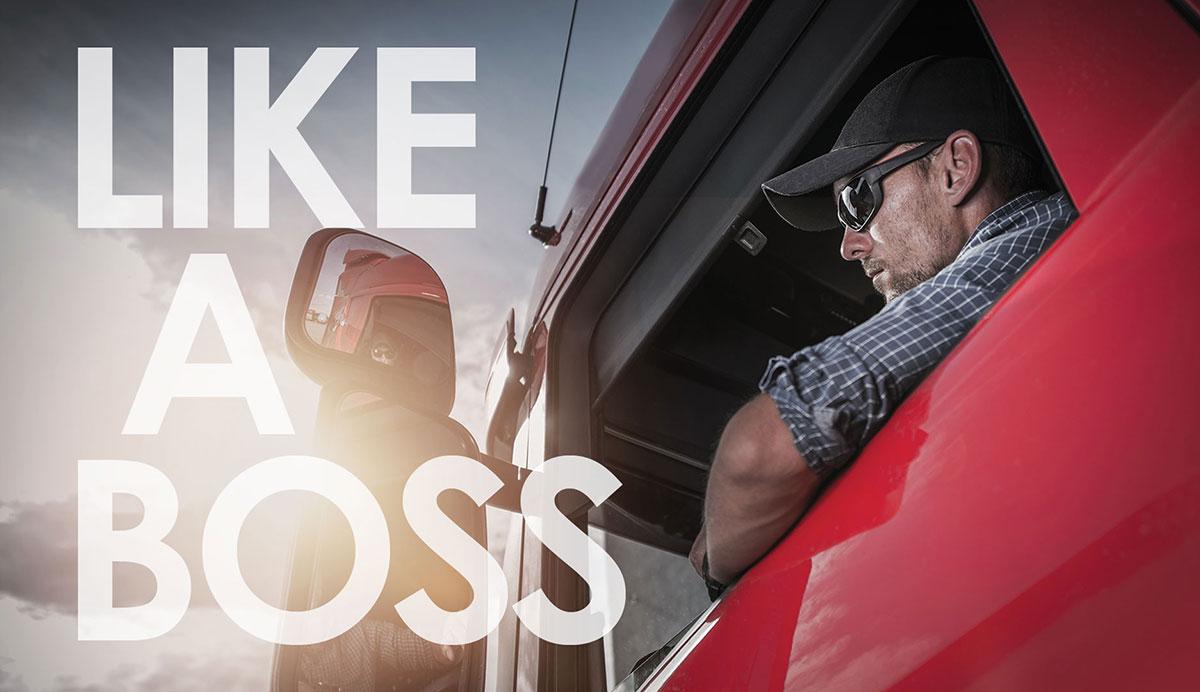 TBS Like a Boss ad