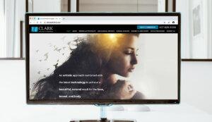 Clark Institute for Aesthetics Rebrand